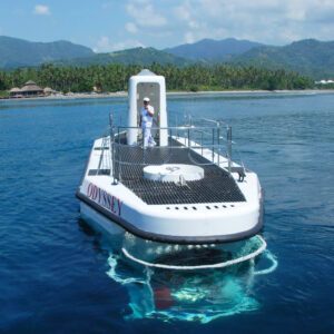 Bali Honeymoon Submarine